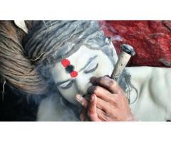 solve my love specialist astrology +91-9465285386 kolkata